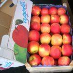 jabolka